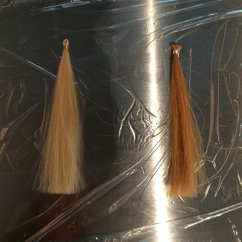 毛束 実験